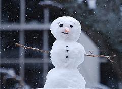 snowman deananddena